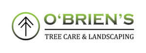 O'Brien's Tree Care & Landscaping logo